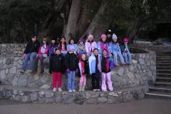 Pilgrim Pines