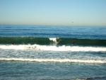 101114-surf-kickoff-classic-012