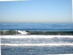 101114-surf-kickoff-classic-018