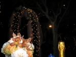 101002-wilson-wedding-113